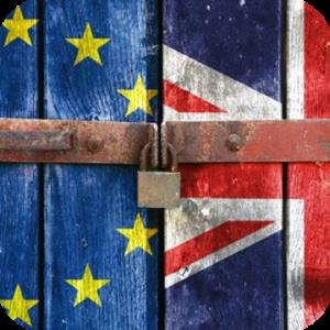 Büyük Britanya ve Kuzey İrlanda Birleşik Krallığının Avrupa Birliği ve Avrupa Atom Enerjisi Topluluğundan çekilmesi hakkında yönetmeliğinin gümrük işlemleri ile ilgili bölümü.